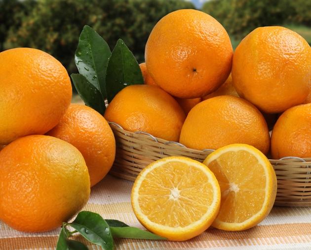 Conheça quais são os alimentos antioxidantes