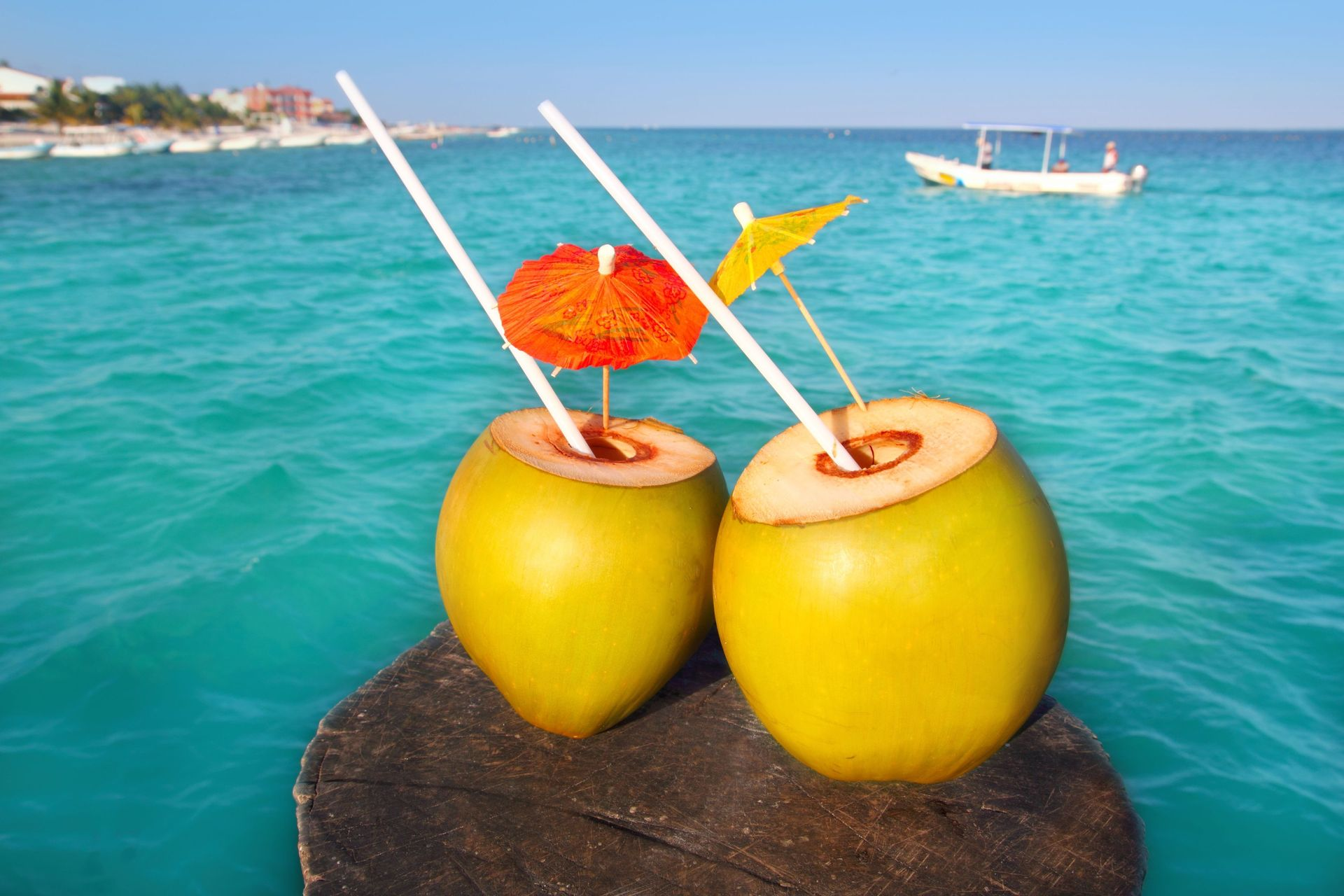 Os Benefícios da Água de Coco | Blog SWIMEX